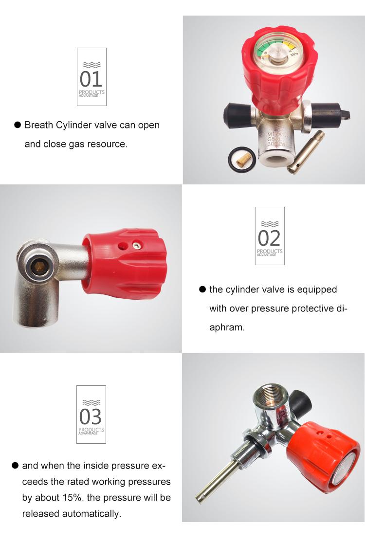 pcp air gun valve paintball