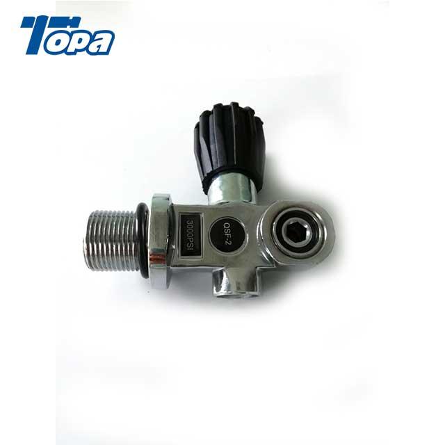 z valve pcp